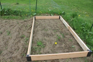 The first raised bed
